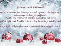 Božično-novoletni prazniki pred vrati